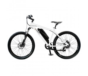 E-Bike  Xplorer Urban NY